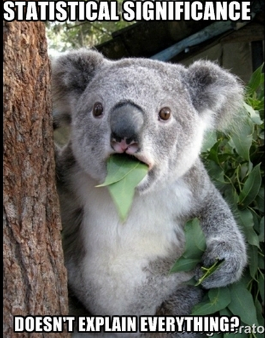 koala can't significance
